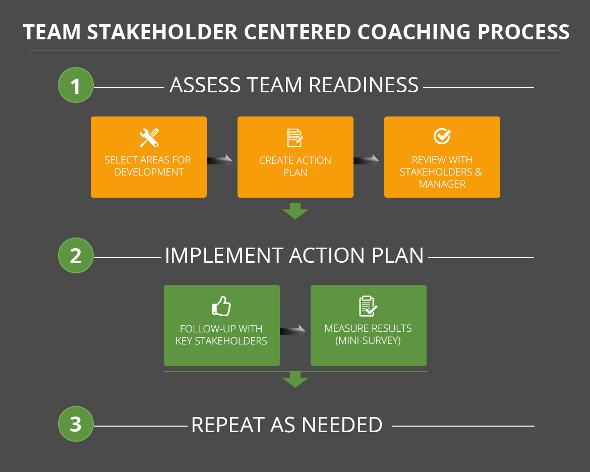 team-stakeholder-centered-coaching-process